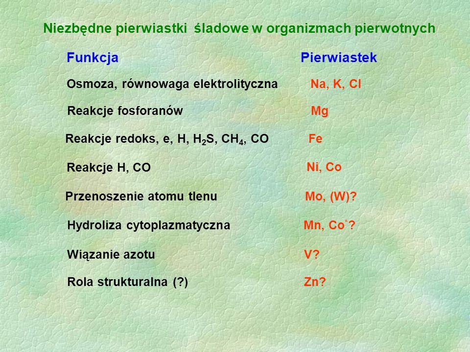 Niezbędne pierwiastki śladowe w organizmach pierwotnych