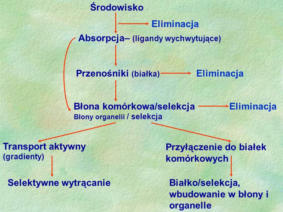 Środowisko Eliminacja. Absorpcja– (ligandy wychwytujące) Przenośniki (białka) Eliminacja. Błona komórkowa/selekcja Błony organelii / selekcja.