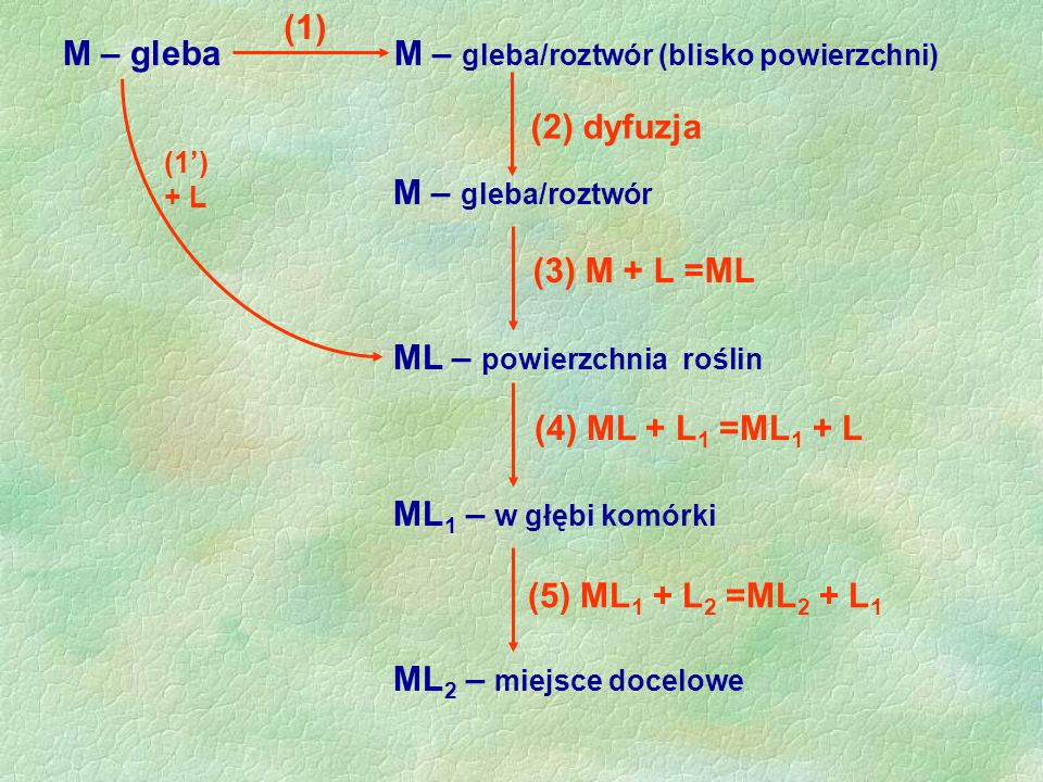 M – gleba M – gleba/roztwór (blisko powierzchni)