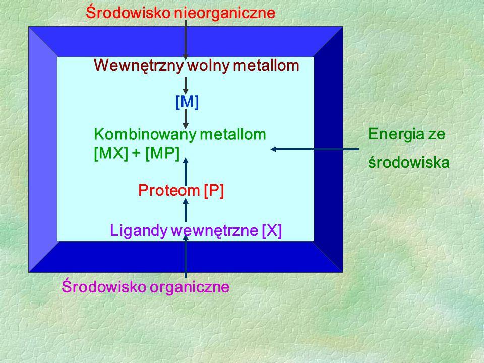 Środowisko nieorganiczne
