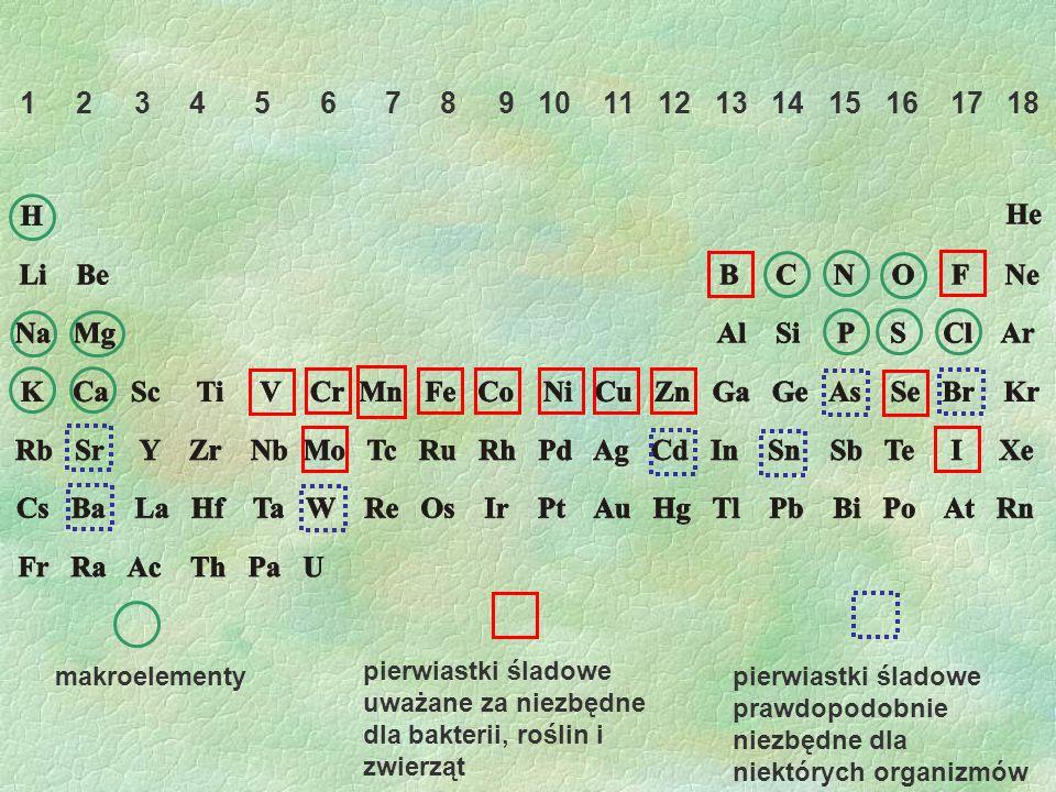 1 2 3 4 5 6 7 8 9 10 11 12 13 14 15 16 17 18 makroelementy.
