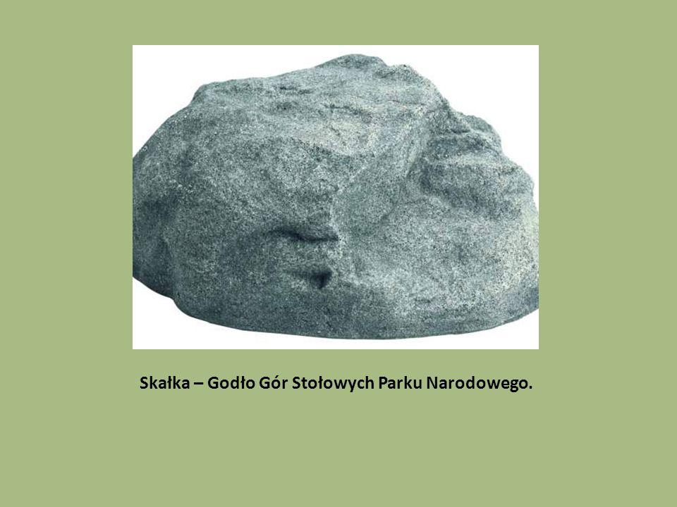 Skałka – Godło Gór Stołowych Parku Narodowego.