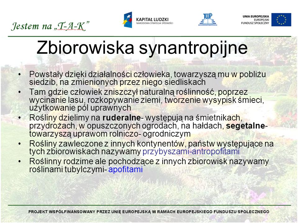 Zbiorowiska synantropijne