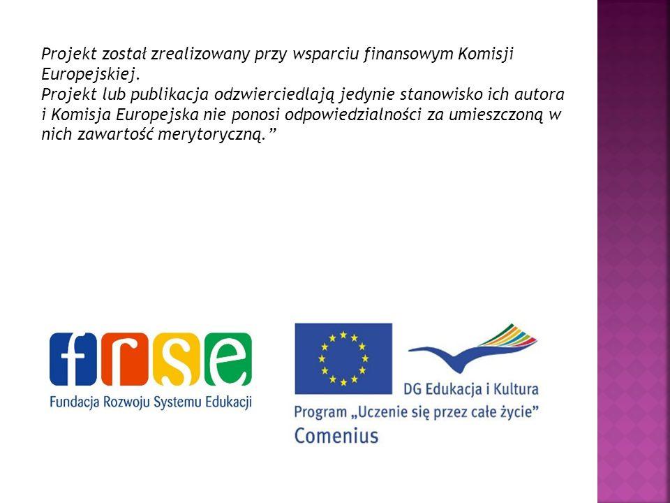 Projekt został zrealizowany przy wsparciu finansowym Komisji Europejskiej.
