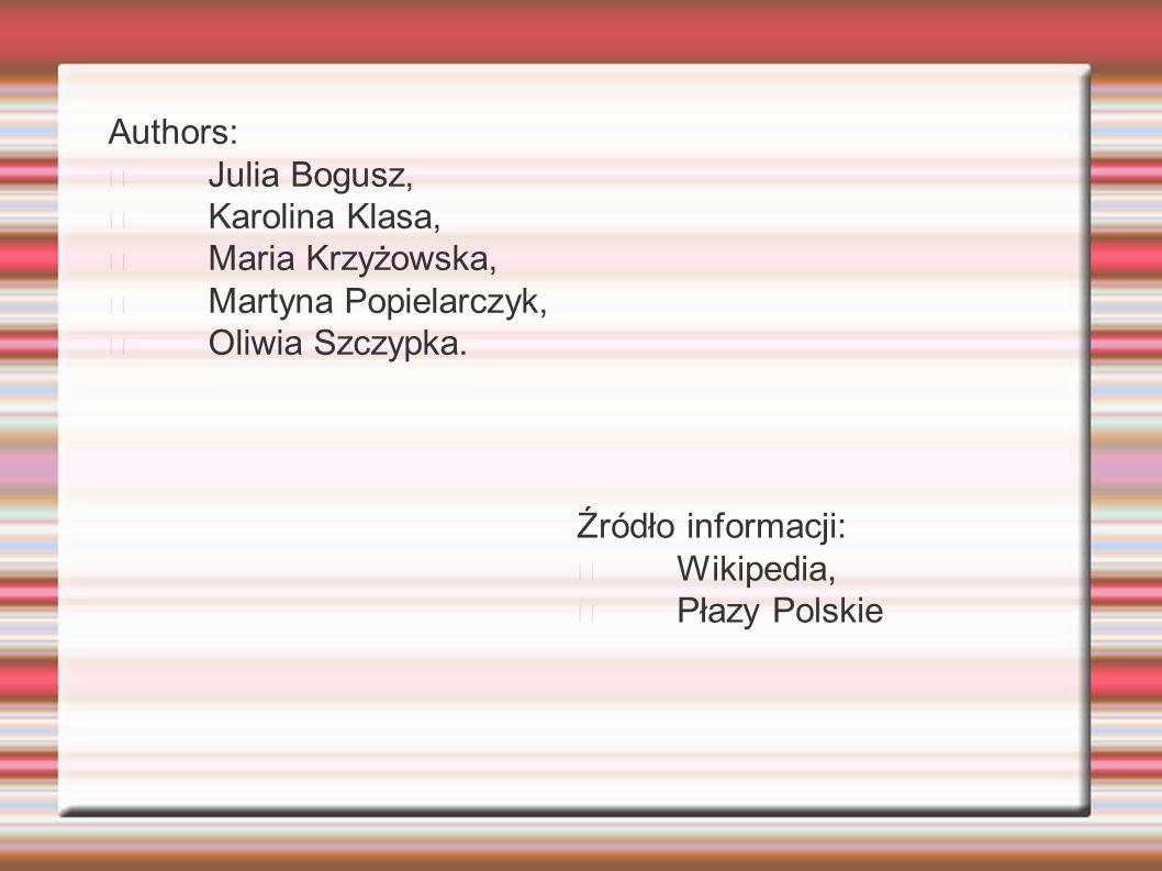 Authors: Julia Bogusz, Karolina Klasa, Maria Krzyżowska, Martyna Popielarczyk, Oliwia Szczypka.