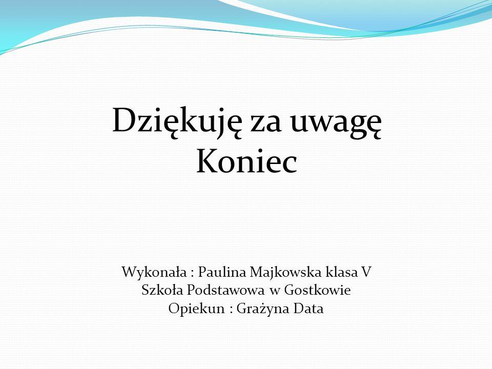 Dziękuję za uwagę Koniec Wykonała : Paulina Majkowska klasa V
