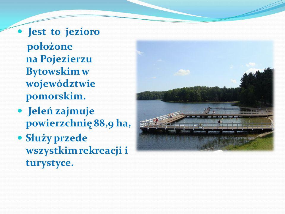 Jest to jezioro położone na Pojezierzu Bytowskim w województwie pomorskim. Jeleń zajmuje powierzchnię 88,9 ha,