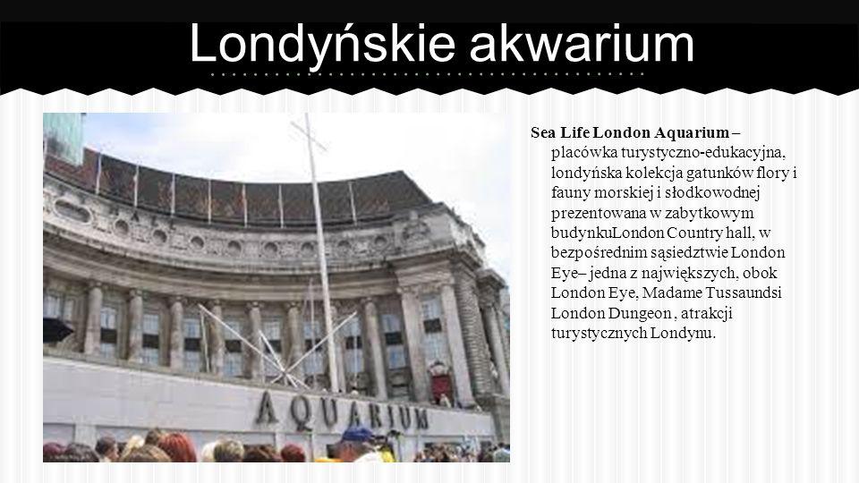 Londyńskie akwarium