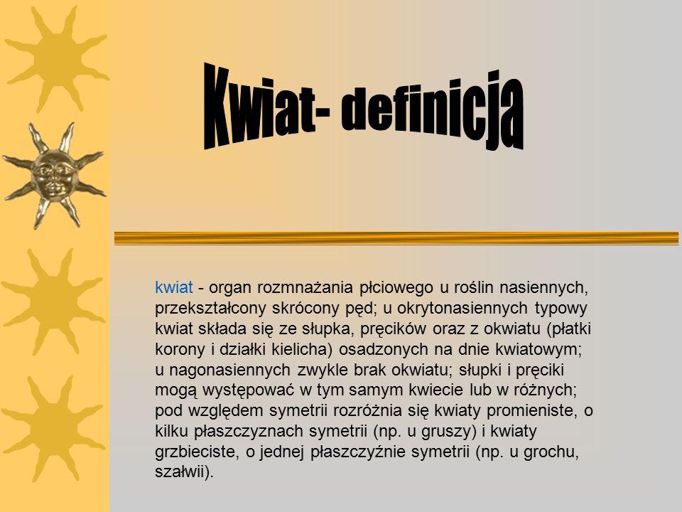 Kwiat- definicja