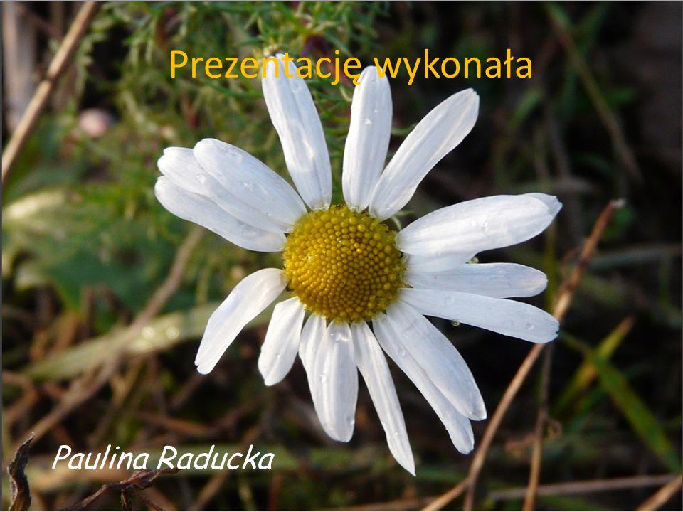 Prezentację wykonała Paulina Raducka