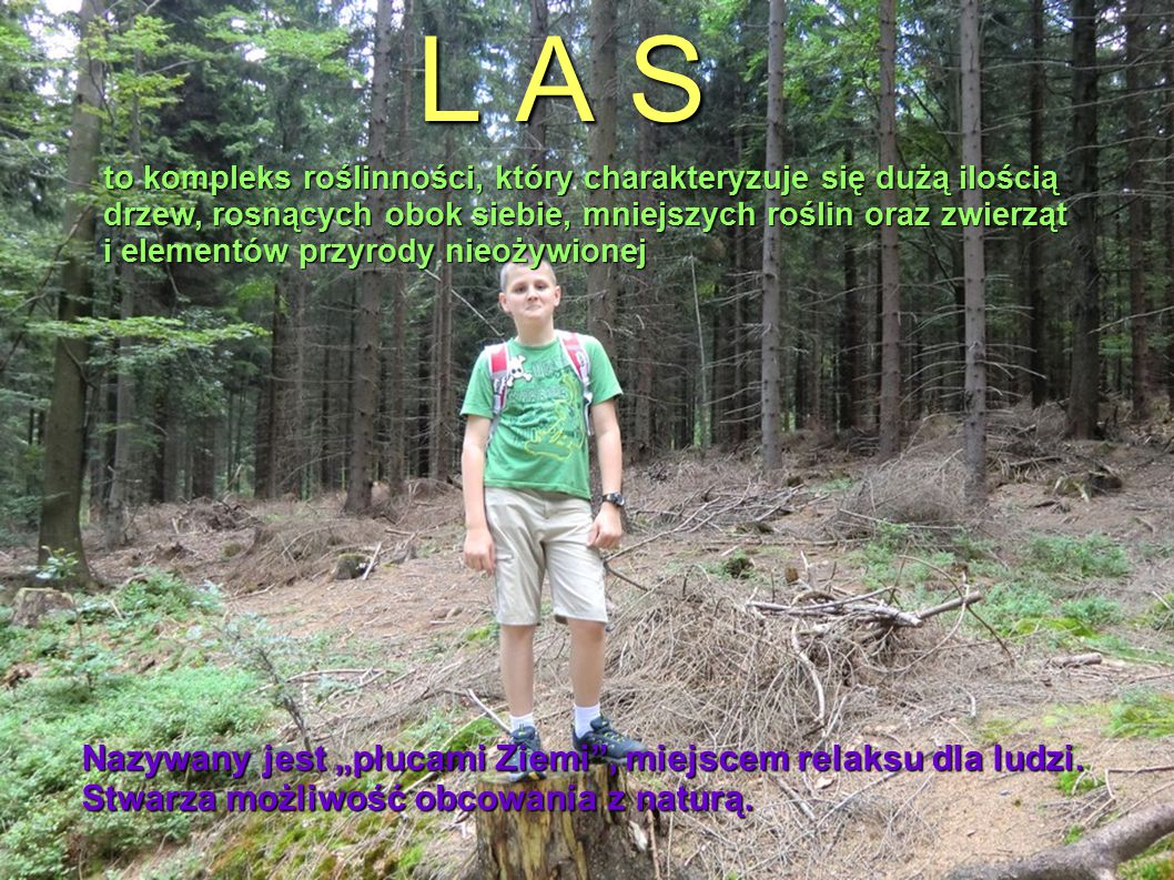 """L A S . Nazywany jest """"płucami Ziemi , miejscem relaksu dla ludzi."""