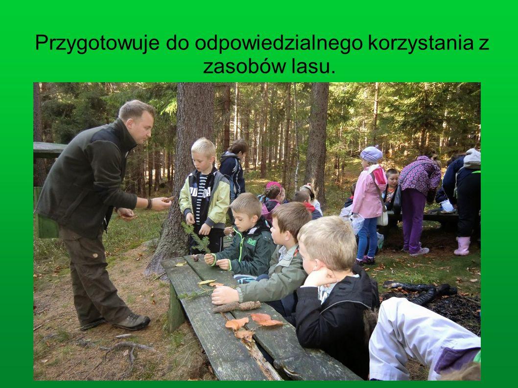 Przygotowuje do odpowiedzialnego korzystania z zasobów lasu.