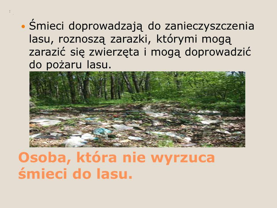 Osoba, która nie wyrzuca śmieci do lasu.
