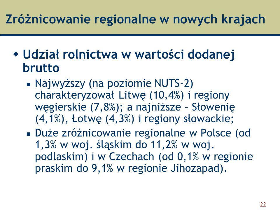 Zróżnicowanie regionalne w nowych krajach