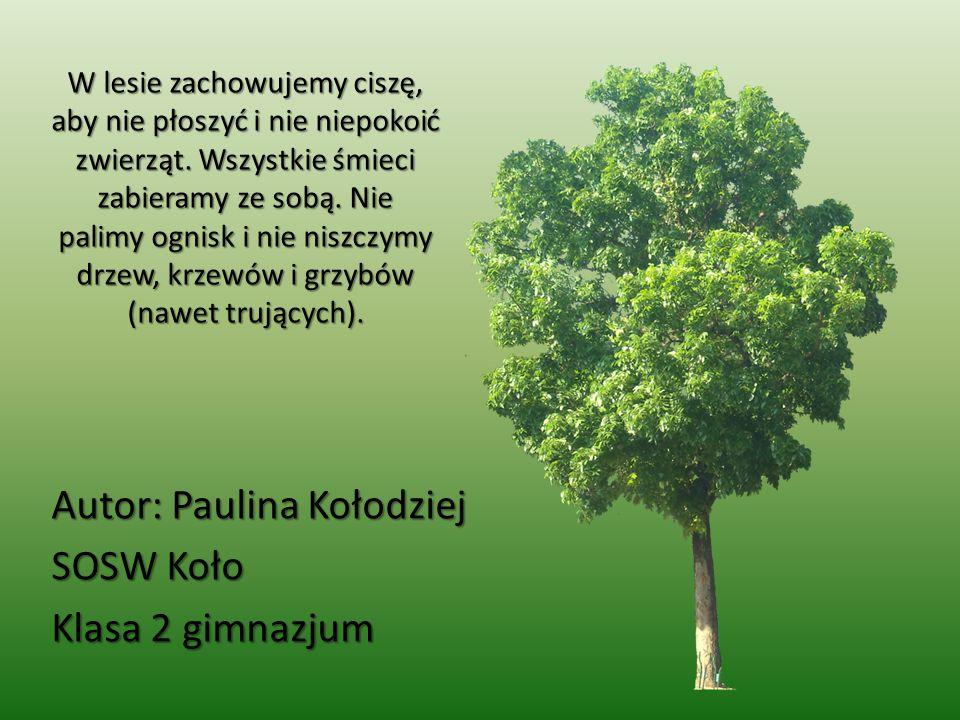 Autor: Paulina Kołodziej SOSW Koło Klasa 2 gimnazjum
