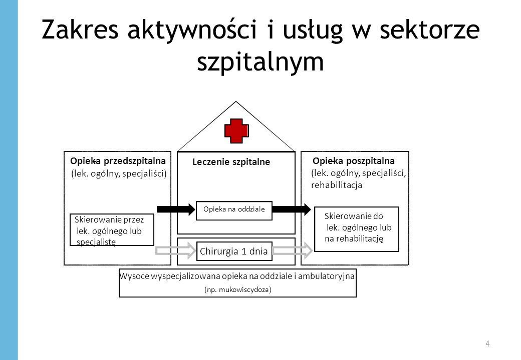 Zakres aktywności i usług w sektorze szpitalnym