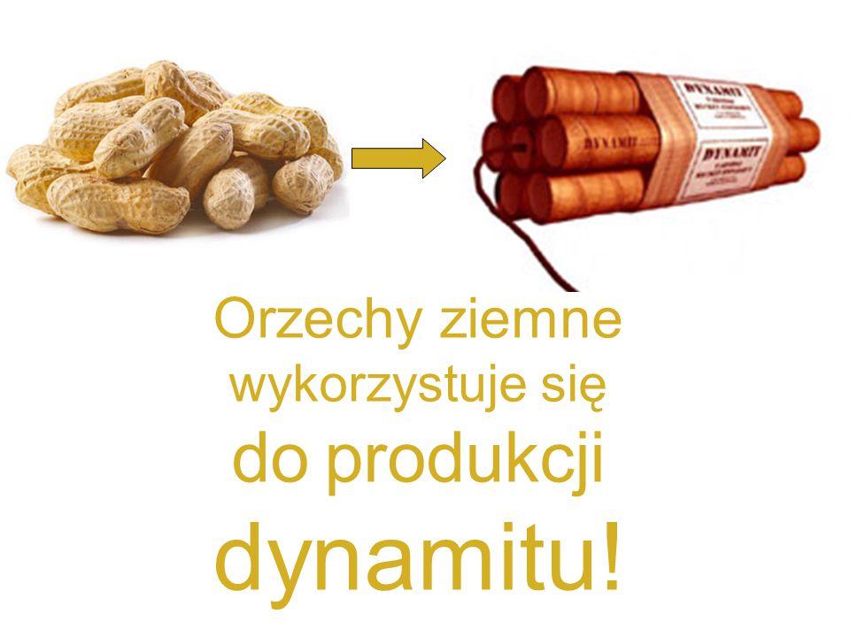 Orzechy ziemne wykorzystuje się do produkcji dynamitu!