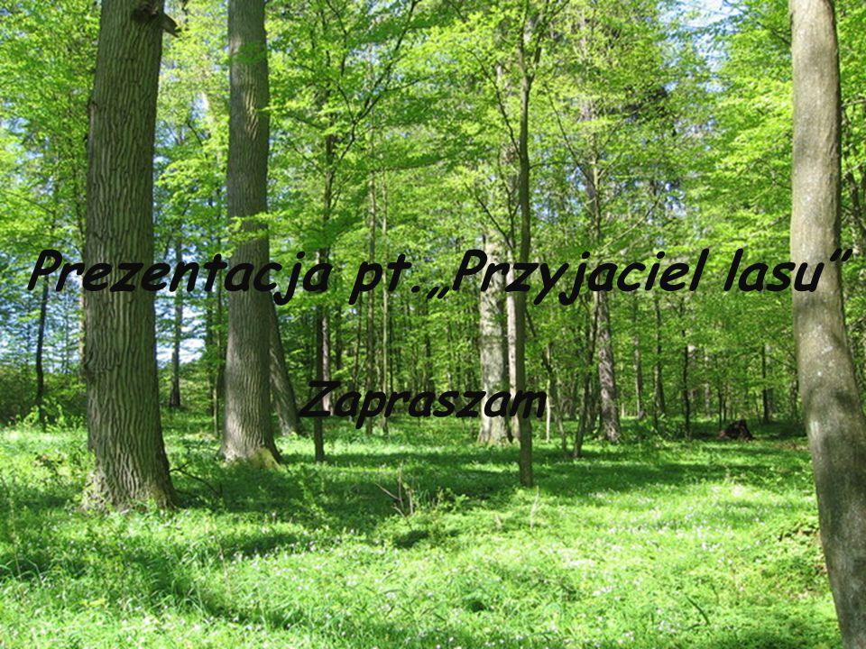 """Prezentacja pt.""""Przyjaciel lasu"""