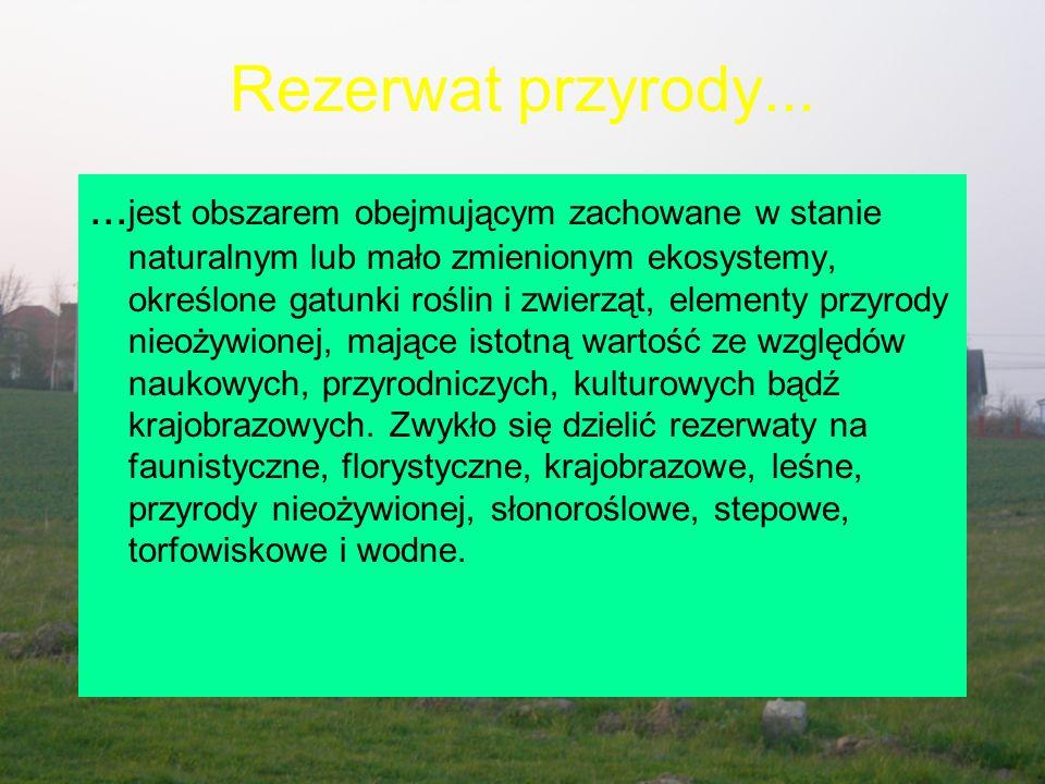 Rezerwat przyrody...