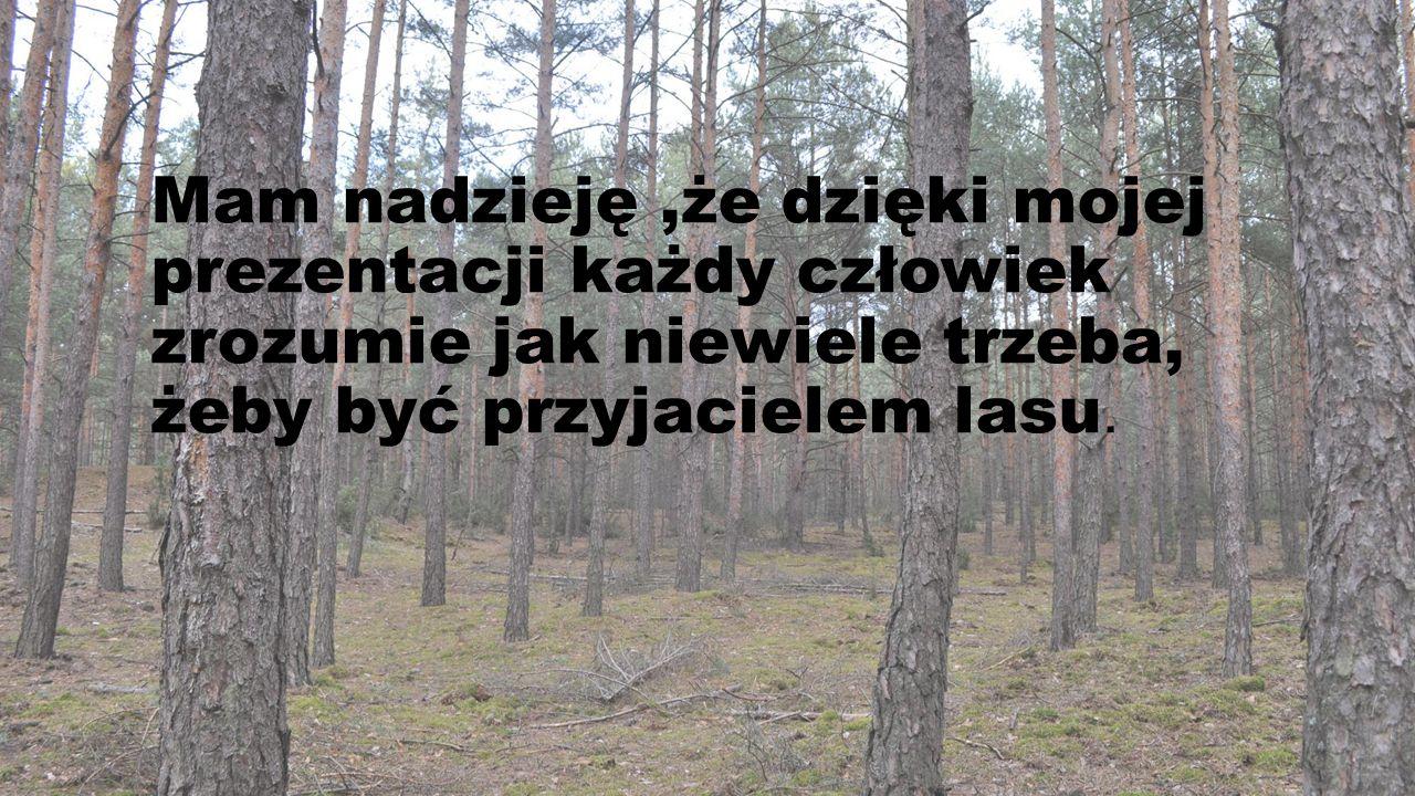 Mam nadzieję ,że dzięki mojej prezentacji każdy człowiek zrozumie jak niewiele trzeba, żeby być przyjacielem lasu.