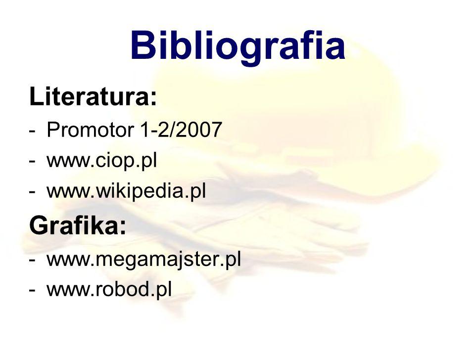 Bibliografia Literatura: Grafika: Promotor 1-2/2007 www.ciop.pl