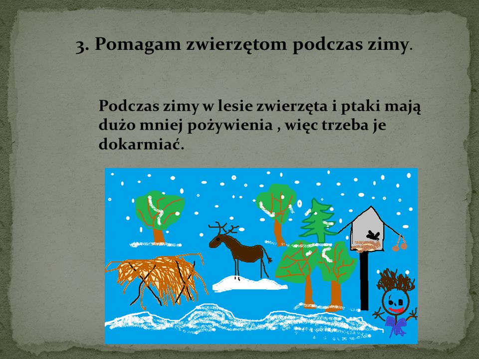 3. Pomagam zwierzętom podczas zimy.