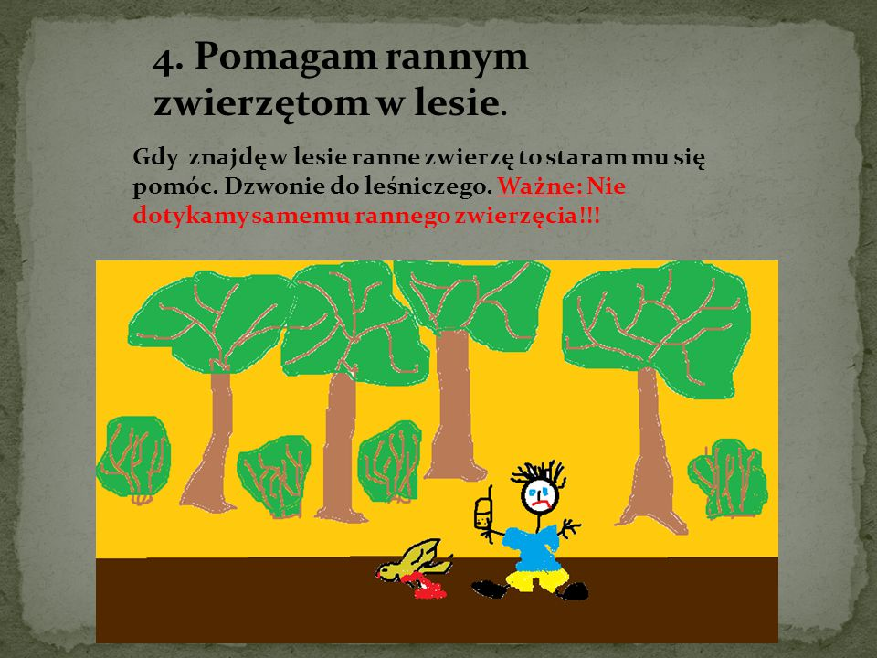 4. Pomagam rannym zwierzętom w lesie.