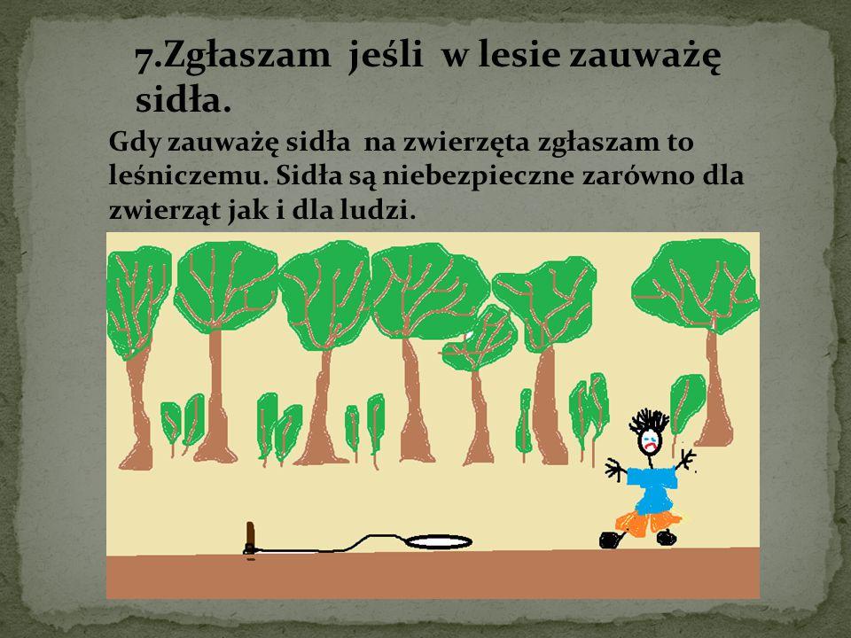7.Zgłaszam jeśli w lesie zauważę sidła.