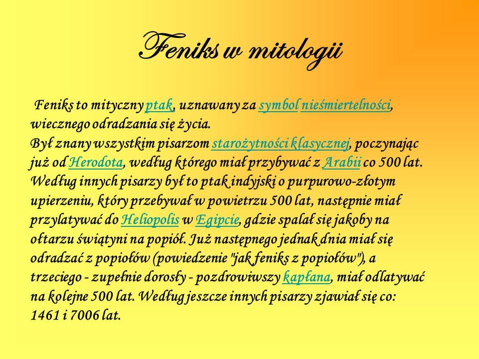 Feniks w mitologii Feniks to mityczny ptak, uznawany za symbol nieśmiertelności, wiecznego odradzania się życia.