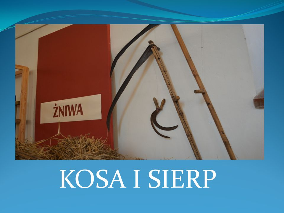 KOSA I SIERP