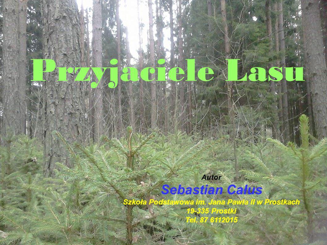 Szkoła Podstawowa im. Jana Pawła II w Prostkach