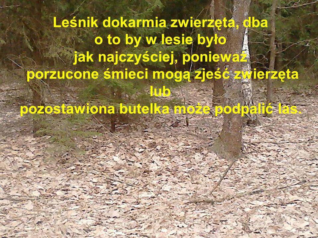 pozostawiona butelka może podpalić las.