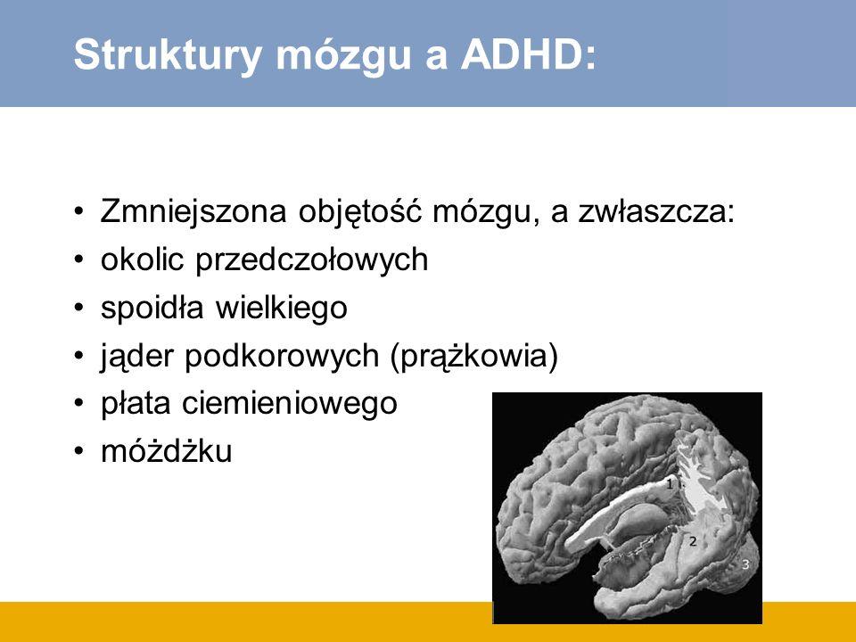 Struktury mózgu a ADHD: