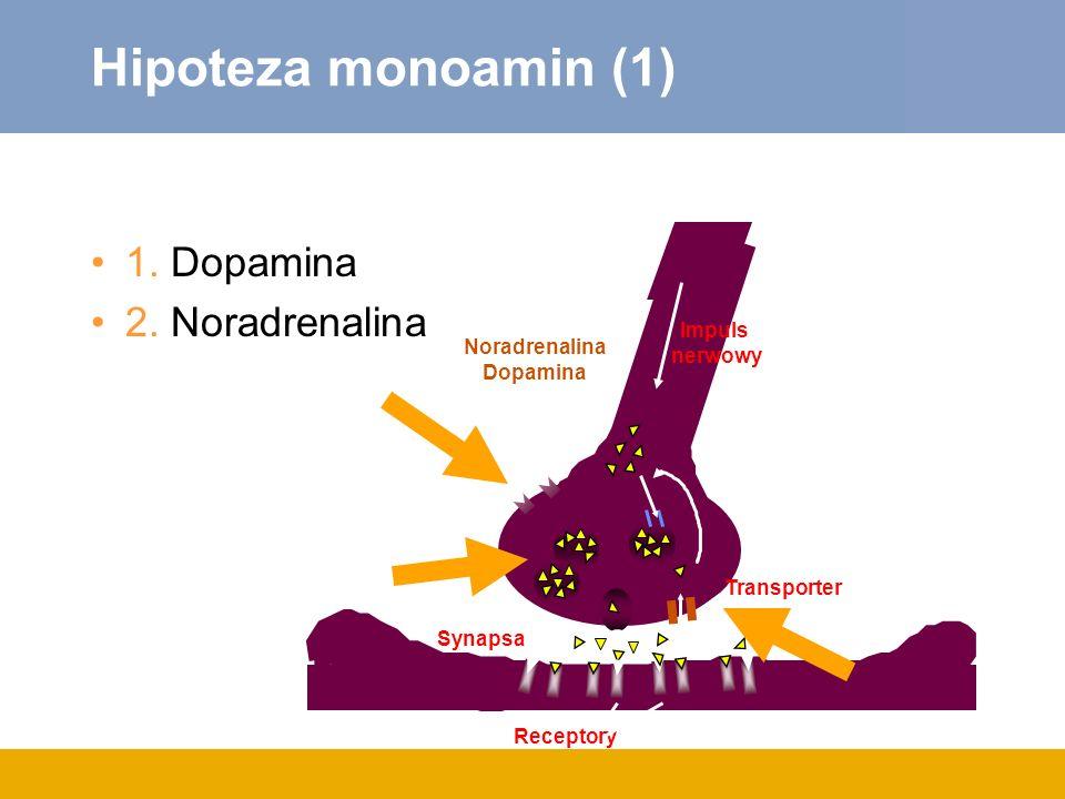 Hipoteza monoamin (1) 1. Dopamina 2. Noradrenalina Impuls nerwowy