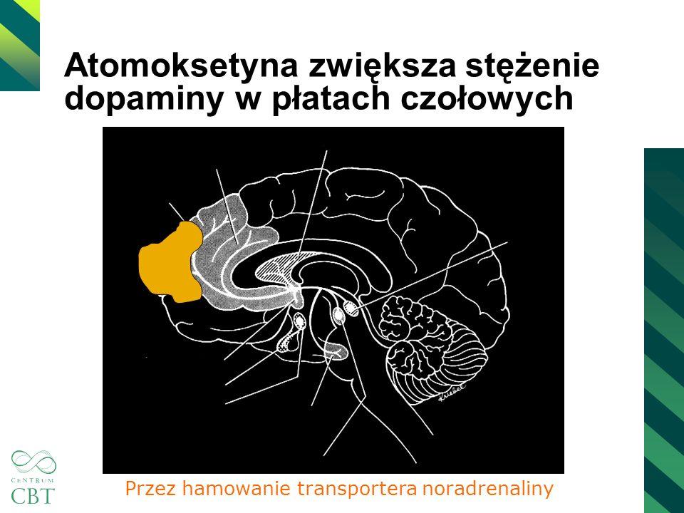 Atomoksetyna zwiększa stężenie dopaminy w płatach czołowych