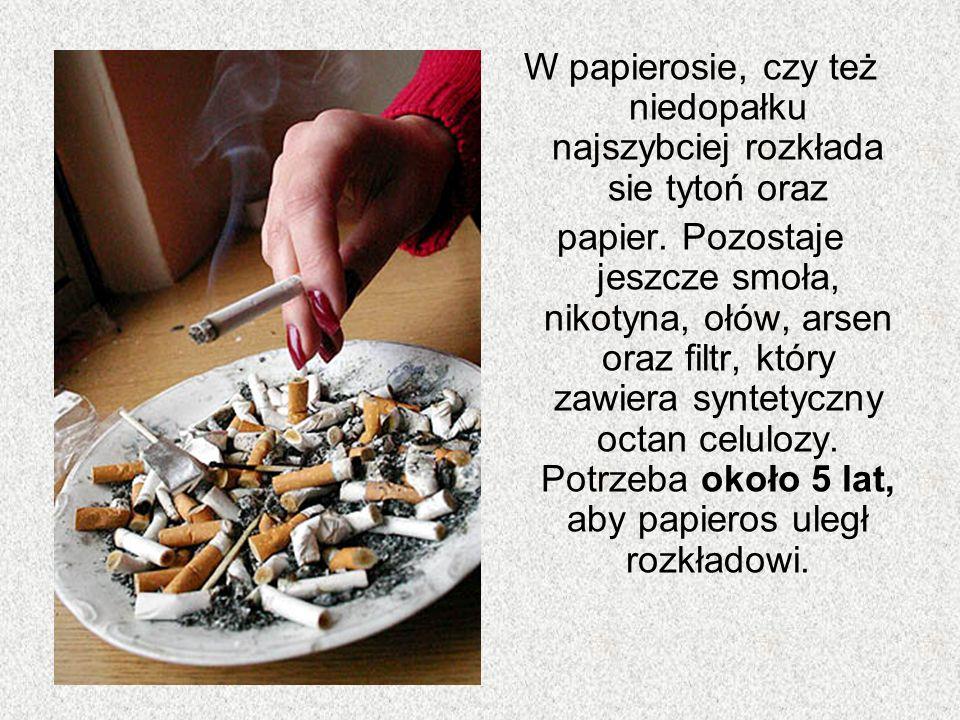 W papierosie, czy też niedopałku najszybciej rozkłada sie tytoń oraz
