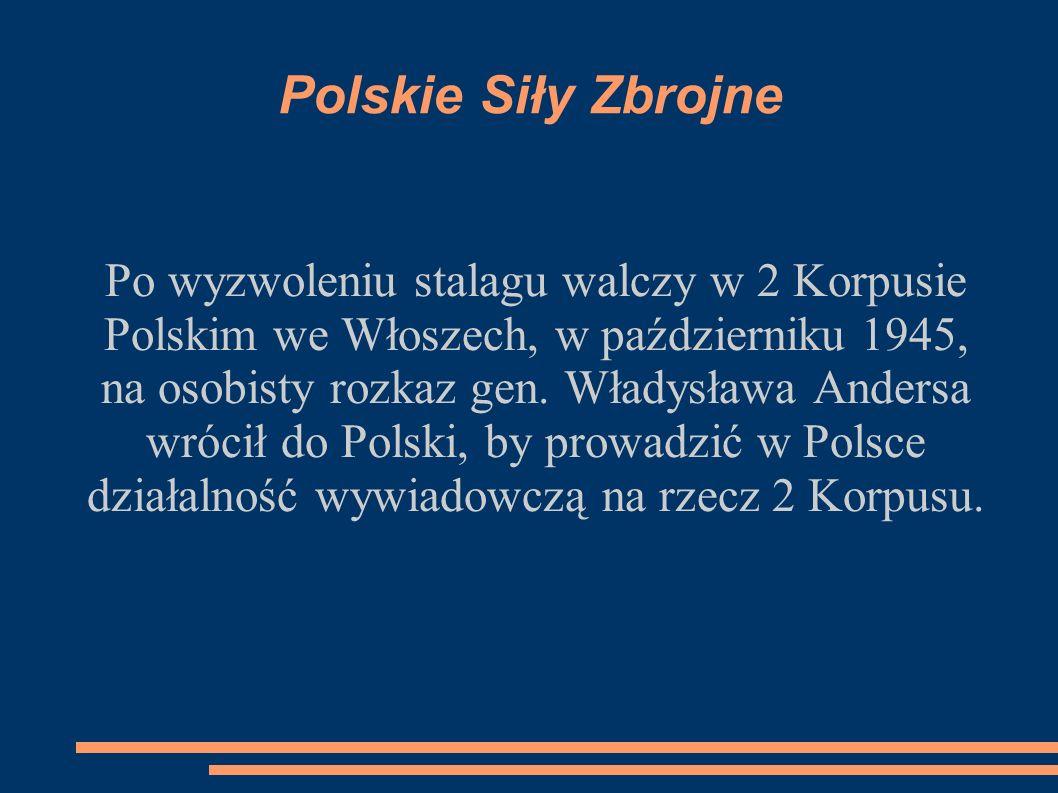 Polskie Siły Zbrojne