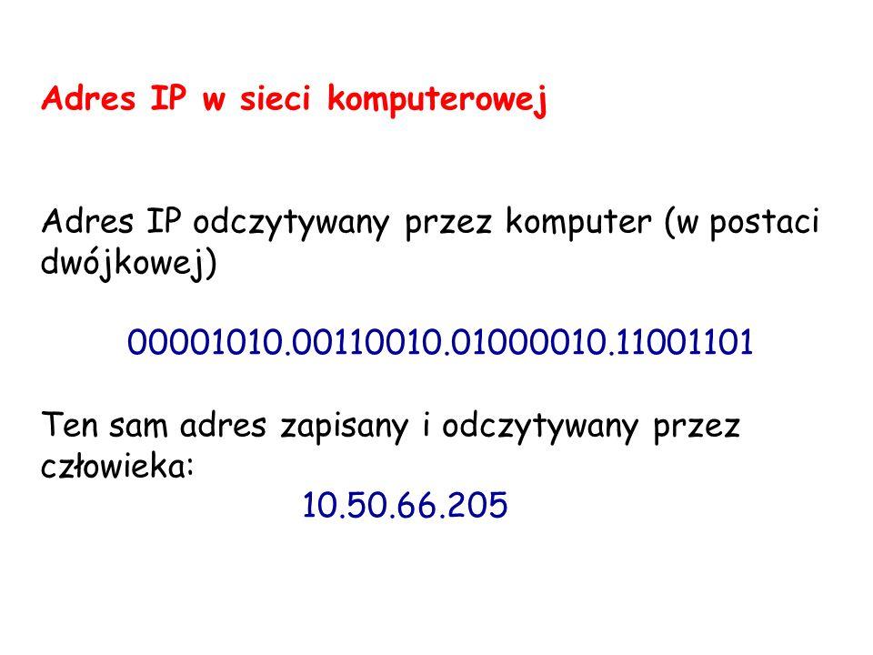 Adres IP w sieci komputerowej