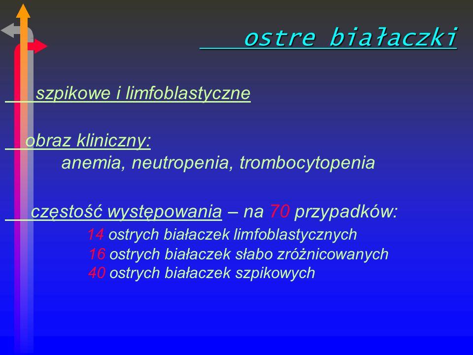 ostre białaczki szpikowe i limfoblastyczne
