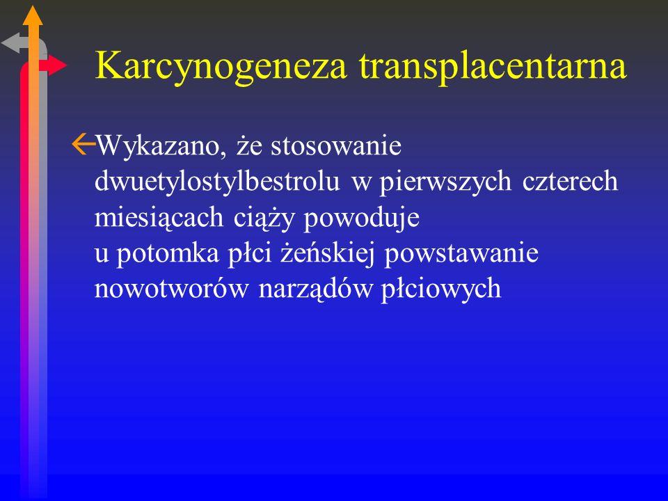Karcynogeneza transplacentarna