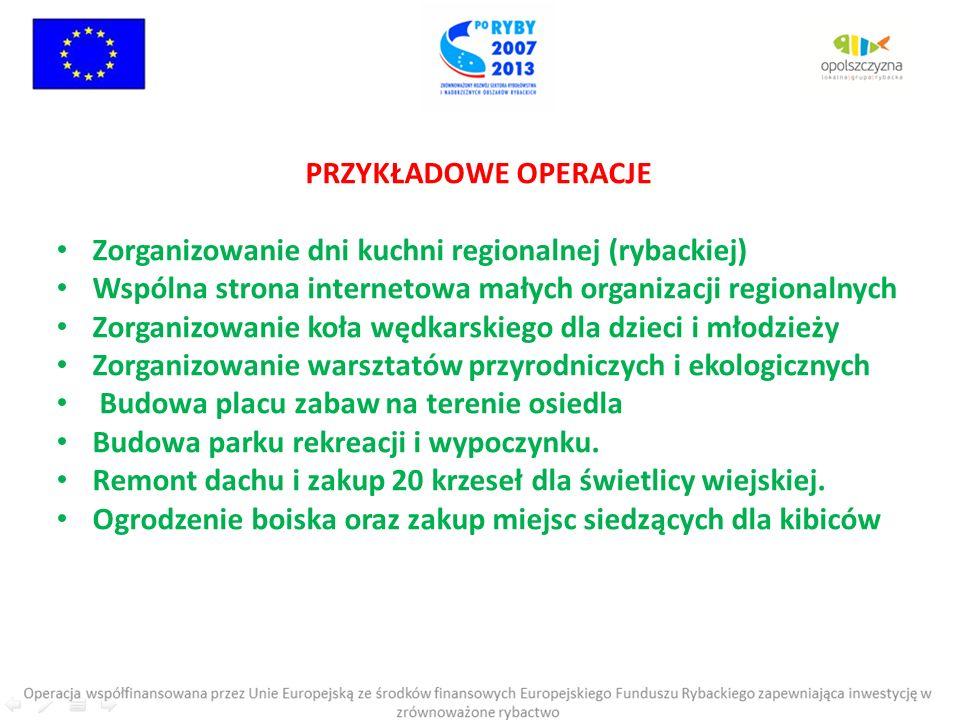 PRZYKŁADOWE OPERACJE Zorganizowanie dni kuchni regionalnej (rybackiej) Wspólna strona internetowa małych organizacji regionalnych.