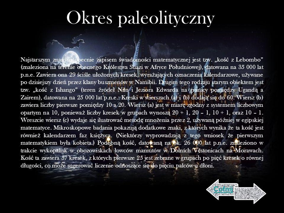 Okres paleolityczny