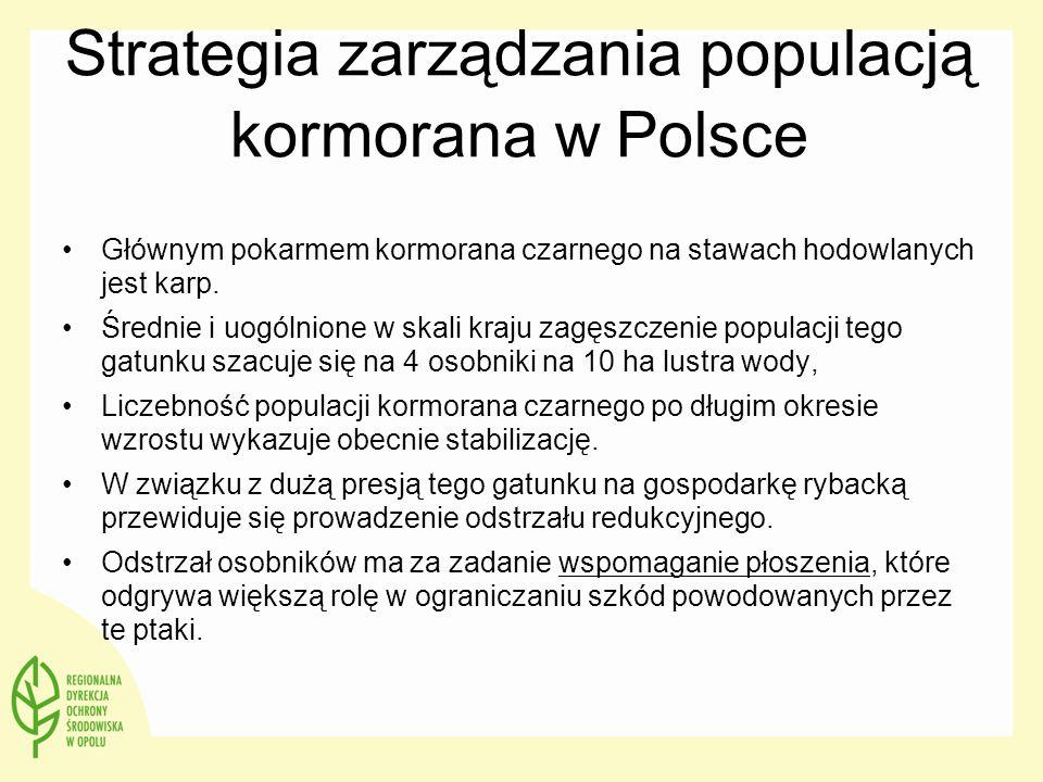 Strategia zarządzania populacją kormorana w Polsce