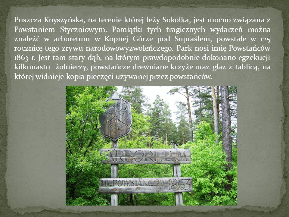 Puszcza Knyszyńska, na terenie której leży Sokółka, jest mocno związana z Powstaniem Styczniowym.