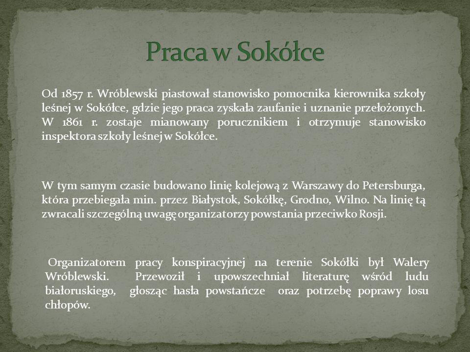 Praca w Sokółce