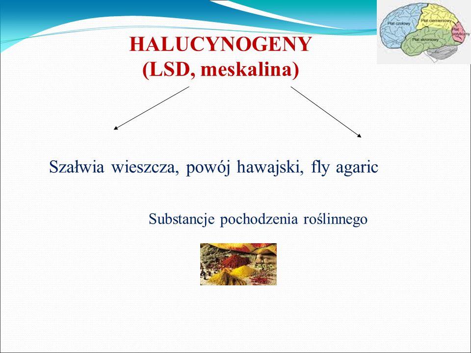 HALUCYNOGENY (LSD, meskalina)
