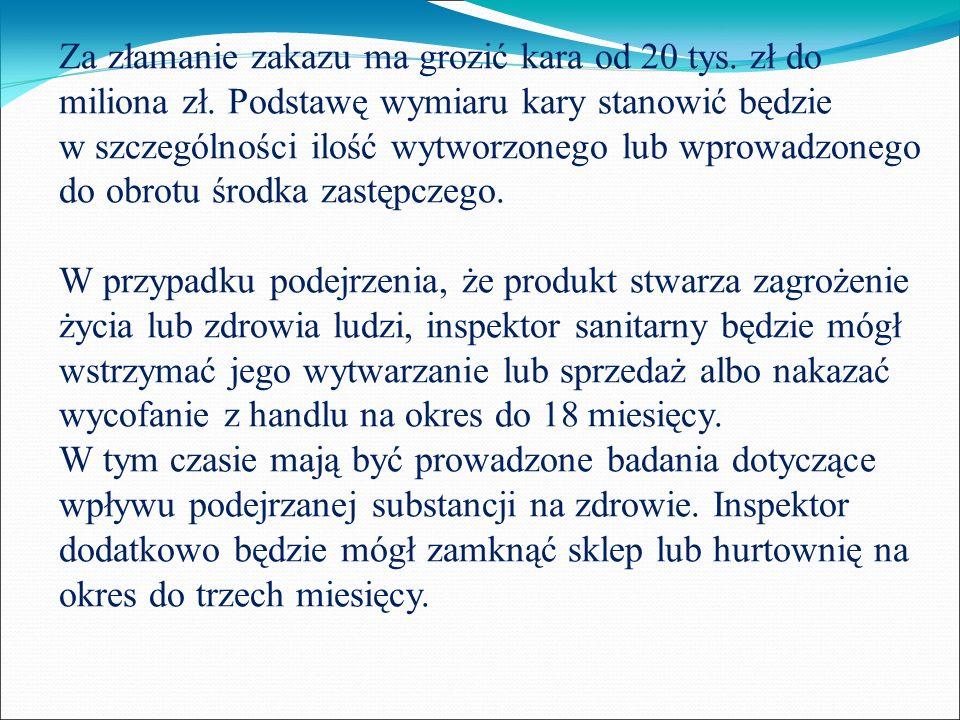 Za złamanie zakazu ma grozić kara od 20 tys. zł do miliona zł