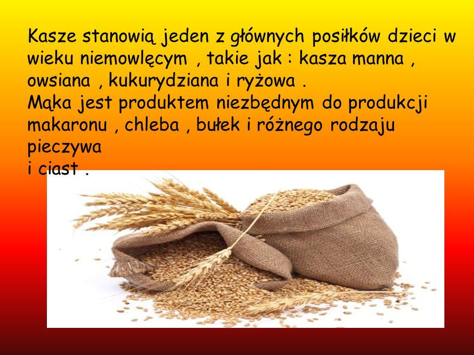 Kasze stanowią jeden z głównych posiłków dzieci w wieku niemowlęcym , takie jak : kasza manna ,