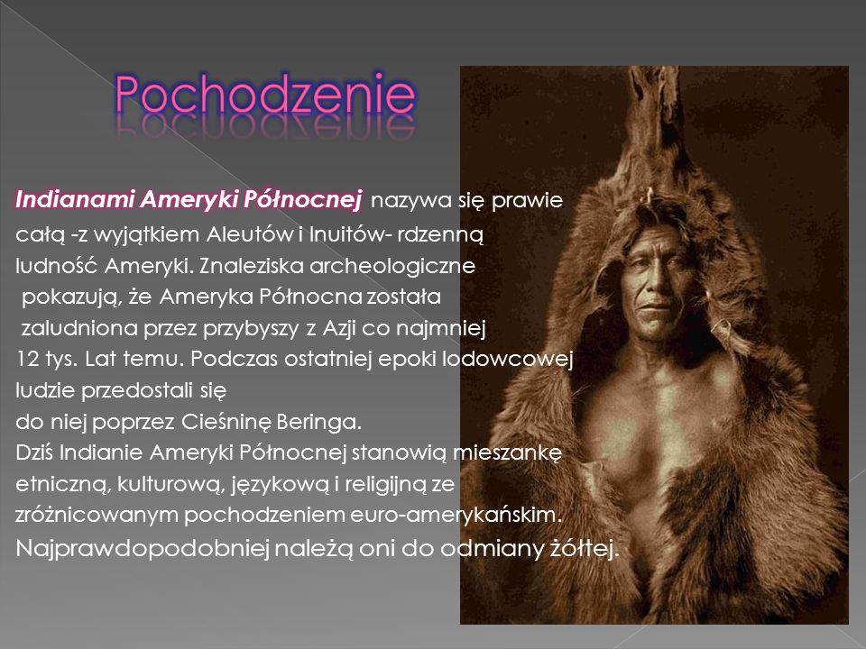Pochodzenie Indianami Ameryki Północnej nazywa się prawie