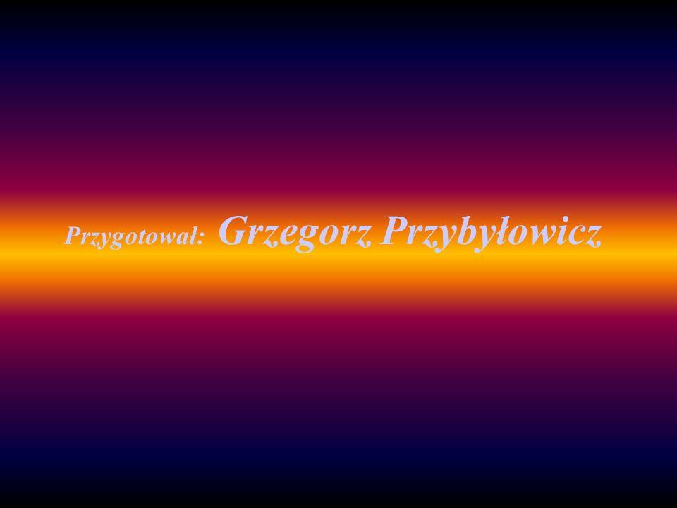 Przygotował: Grzegorz Przybyłowicz